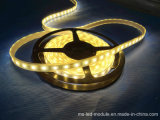 Fabricação SMD 5050 DC 12V LED Strip for Outdoor