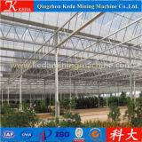 녹색 집 농업 상업적인 이용된 온실