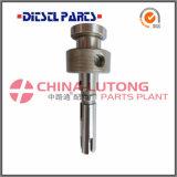 146401-2120 Hauptläufer für Kraftstoffpumpe-Teile Nissan-Td27-
