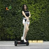2 самоката электрических баланса собственной личности колеса портативная пишущая машинка 2 электрических стоящих самоката колеса миниых
