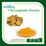 Muestras gratuitas crisofanol 98% CAS: 481-74-3 ruibarbo Extracto