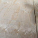 Irradiar por completo el uso interior de la madera contrachapada del pino