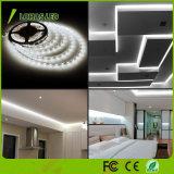 220V 12V RGBW LED Streifen-Licht mit Ferncontroller