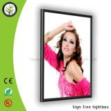 Gemaakt vier-Zij Open Frame Slanke LEIDENE van het Frame van het Aluminium Lichte Doos
