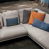 Modernes neues Art-Wohnzimmer-Gewebe-Sofa eingestellt (F1112)