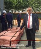 Beroeps 99.99% de Kathoden Lme van het Koper aan Europa