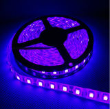 新しいデザインSMD5054適用範囲が広いLED滑走路端燈96LEDs/M