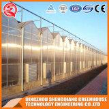China-Aluminiumprofil-Polycarbonat-Gewächshaus