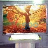 P4は視野の効果の屋内フルカラーのLED表示スクリーンを完成する