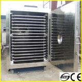 Htd Serien-populäre China-Verkaufs-Frucht-Frost-Trockner-/Frucht-Vakuumfrost-trocknende Maschine