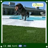 Erba artificiale d'abbellimento comoda del giardino per l'animale domestico
