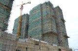 De Kraan van de Toren van de bouw met Kraanbalk 60m en de Capaciteit van de Lading van 6ton