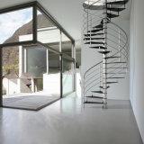 Escalier personnalisé d'acier du carbone