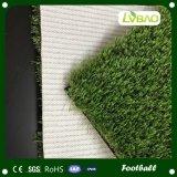 総合的な草を置く総合的なフットボールの泥炭