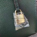 Bester heißer Sprung-Leder-Entwurf der Handtasche für die Frauen Luxux