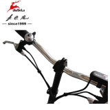 """"""" mini vélo 16 noir avec la batterie au lithium de 24V 10ah (JSL016A-9)"""