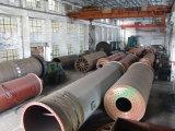 Pengfaは1つの停止スペアーを供給し、肥料のプラントのために整備する