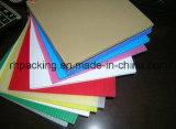 Panneau en plastique pp Coroplast Corflute Correx de protection de construction et de construction avec l'impression