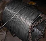 Câble de fil d'acier 1X19 et 1X37 pour câble de commande
