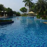 Frontera de la piscina