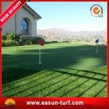 Plastic Gras van het Gras van het Gras van Easun het Kunstmatige voor het Modelleren