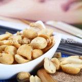 판매를 위한 증명된 파삭파삭한 소금에 절이는 취향 땅콩