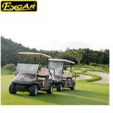 Carro de golf eléctrico barato con pilas de A1s2 8V