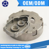 Het Afgietsel van de Matrijs van de Huisvesting van de Legering van het aluminium (DR037)