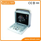 Ветеринарный цвет Doppler (DopScan N5V)