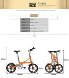 Bici piegata singola velocità piegante della bici di mini stile
