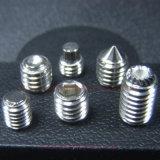 DIN913 de Contactdoos Setscrew van het roestvrij staal