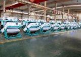 As máquinas agriculturais de Hons+ avançaram o classificador de classificação ótico da cor do CCD do arroz