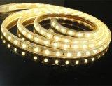 5050 60LEDs/M 높은 볼트 최고 밝은 LED 지구