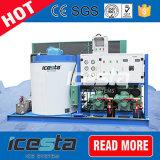 Flocken-Eis-Maschine des Schnee-1000kg