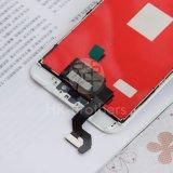 Handy-Bildschirm-Bildschirmanzeige-Großverkauf LCD für iPhone 6s plus
