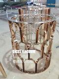 Лакировочная машина золота листа нержавеющей стали высокого качества Titanium/оборудование для нанесения покрытия олова листа нержавеющей стали