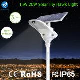 Qualité 15W tout dans un réverbère solaire de DEL
