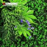 De hete Kunst van de Tuin van de Muur van Producten UV Beschermde Verticale met Gebladerte