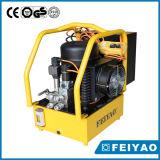 모터에 의하여 모는 700bar 전기 유압 펌프
