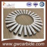 De Pijp van de Nevel van het Carbide van Tungste en de Pijp van de Nevel van het Carbide van het Borium