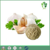 Aglio deodorizzato Extract Polvere Allicin 1%-6% dell'aglio