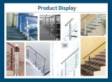 Balustrade en aluminium Sh-201 d'éther de point de contact d'acier inoxydable