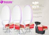 شعبيّة [هيغقوليتي] صالون أثاث لازم مرآة حلّاق صالون كرسي تثبيت ([ب2030])