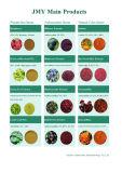 100% Naturel Chrysanthème Extrait de Morifolium Flavone 10% Pyréthrines 50%