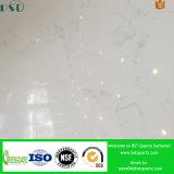 海のシェルの白い設計された水晶石の平板