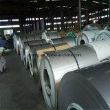 Bobine d'acier inoxydable avec le PVC