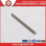Edelstahl 304 316 Stift-Schraube/Gewinde Rod