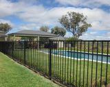 Im Freien dekorative geschweißte bearbeitetes Eisen-Garten-Zaun-gute Qualität