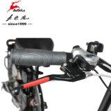 motor sin cepillo 250W delantero/freno de disco trasero plegable Ebikes (JSL039D-7)