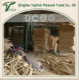 Lamelle en bois de bâti de LVL de bonne qualité de